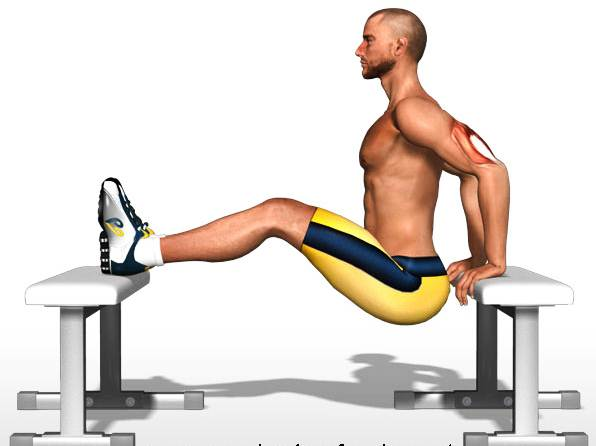 какое упражнение лучше сжигает жир