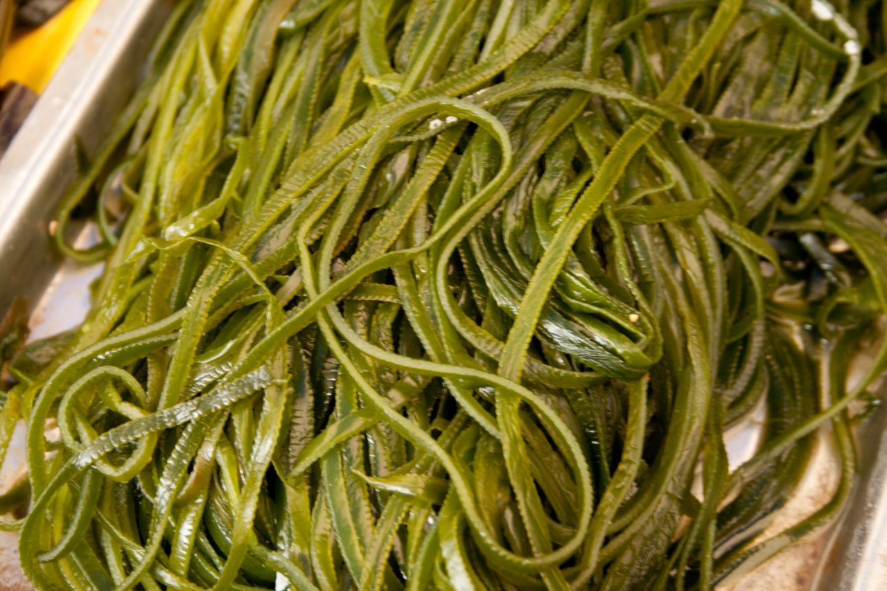 Свойства морской капусты