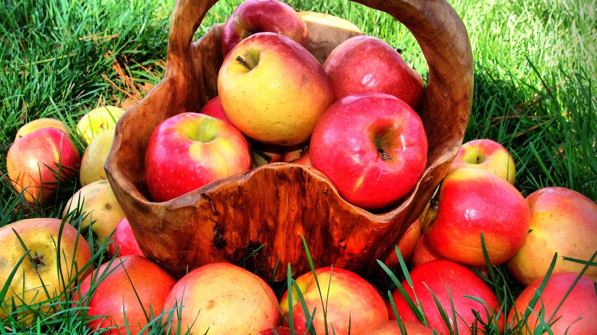 продукты для похудения бедер и ягодиц
