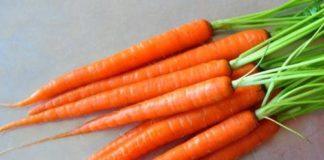 chem-polezna-morkov